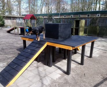 Dordrecht, platform en kubus